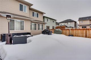 Photo 30: 14 CRANFORD Green SE in Calgary: Cranston Detached for sale : MLS®# C4291439