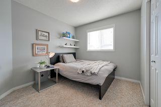 Photo 25: 12023 19 Avenue SW: Edmonton House  : MLS®# E4190455