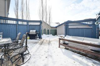Photo 37: 12023 19 Avenue SW: Edmonton House  : MLS®# E4190455