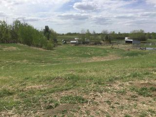 Photo 3: Hwy 37 RR 274: Rural Sturgeon County Rural Land/Vacant Lot for sale : MLS®# E4206967