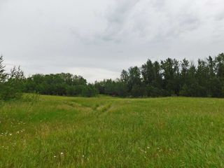 Photo 6: 20315 Victoria Trail: Rural Sturgeon County Rural Land/Vacant Lot for sale : MLS®# E4207390