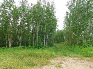 Photo 3: 20315 Victoria Trail: Rural Sturgeon County Rural Land/Vacant Lot for sale : MLS®# E4207390