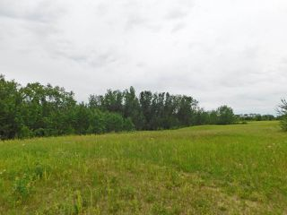 Photo 7: 20315 Victoria Trail: Rural Sturgeon County Rural Land/Vacant Lot for sale : MLS®# E4207390