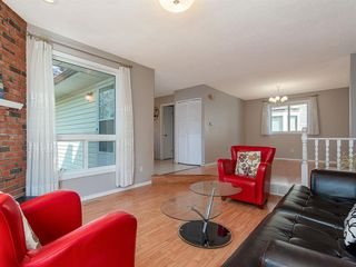 Photo 3: 71 Whitefield Close NE in Calgary: Whitehorn Detached for sale : MLS®# A1020344