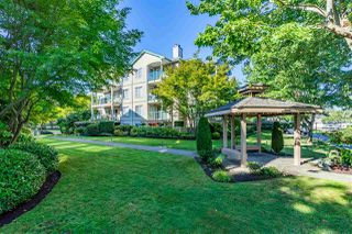 "Photo 29: 408 20433 53 Avenue in Langley: Langley City Condo for sale in ""COUNTRYSIDE ESTATES"" : MLS®# R2492366"