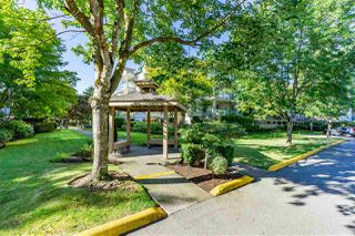 "Photo 28: 408 20433 53 Avenue in Langley: Langley City Condo for sale in ""COUNTRYSIDE ESTATES"" : MLS®# R2492366"