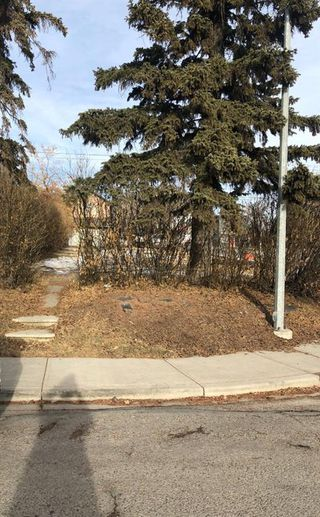 Photo 3:  in Calgary: Capitol Hill Land for sale : MLS®# A1054133
