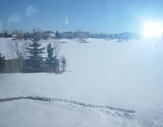 Photo 10: 18 SANDSTONE (WPG) Place in WINNIPEG: Fort Garry / Whyte Ridge / St Norbert Residential for sale (South Winnipeg)  : MLS®# 2803572