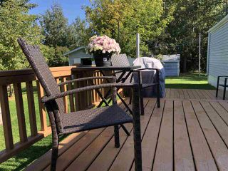 Photo 30: 621 254054 TWP RD 460: Rural Wetaskiwin County House for sale : MLS®# E4173362