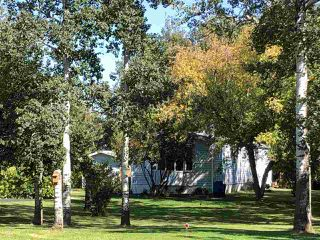 Photo 12: 621 254054 TWP RD 460: Rural Wetaskiwin County House for sale : MLS®# E4173362
