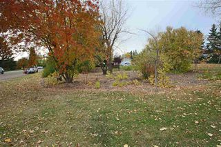 Photo 26: 10527 53 Avenue in Edmonton: Zone 15 House for sale : MLS®# E4176586