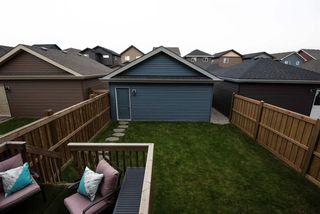 Photo 27: 8179 225 Street in Edmonton: Zone 58 House for sale : MLS®# E4180852