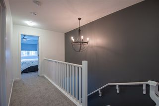 Photo 20: 8179 225 Street in Edmonton: Zone 58 House for sale : MLS®# E4180852