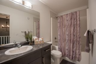 Photo 19: 8179 225 Street in Edmonton: Zone 58 House for sale : MLS®# E4180852