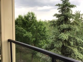 Photo 18: 323 592 HOOKE Road NW in Edmonton: Zone 35 Condo for sale : MLS®# E4186398