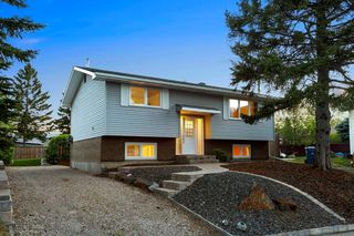 Photo 38: 203 LYNNVIEW Crescent SE in Calgary: Ogden Detached for sale : MLS®# C4299884