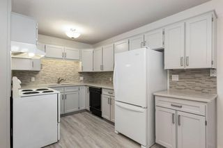 Photo 10: 203 LYNNVIEW Crescent SE in Calgary: Ogden Detached for sale : MLS®# C4299884