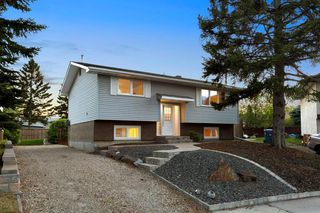Photo 37: 203 LYNNVIEW Crescent SE in Calgary: Ogden Detached for sale : MLS®# C4299884