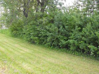Photo 6: 112 & 113 56524 Rg Rd 52A: Lindbergh Vacant Lot for sale : MLS®# E4205703