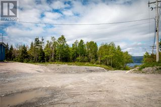 Photo 2: Parcel 045-120 Elizabeth Street in Corner Brook: Vacant Land for sale : MLS®# 1165834