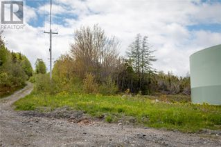 Photo 4: Parcel 045-120 Elizabeth Street in Corner Brook: Vacant Land for sale : MLS®# 1165834