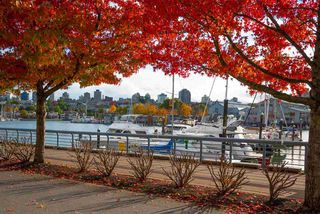"""Photo 23: 802 638 BEACH Crescent in Vancouver: Yaletown Condo for sale in """"ICON"""" (Vancouver West)  : MLS®# R2511968"""