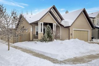 Photo 1: 6 Elgin Estates Grove SE in Calgary: McKenzie Towne Detached for sale : MLS®# A1056581
