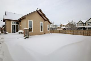 Photo 32: 6 Elgin Estates Grove SE in Calgary: McKenzie Towne Detached for sale : MLS®# A1056581
