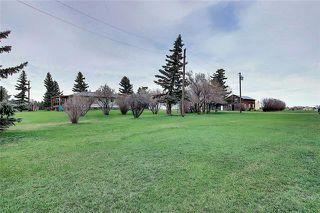 Photo 38: 241148 Range Road 281: Chestermere Detached for sale : MLS®# C4295767