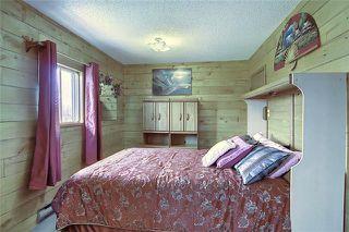 Photo 24: 241148 Range Road 281: Chestermere Detached for sale : MLS®# C4295767
