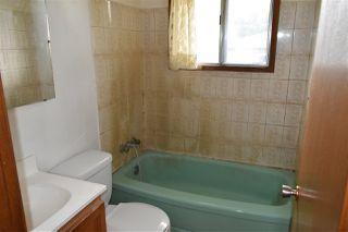 Photo 16: 10407 68 Avenue in Edmonton: Zone 15 House for sale : MLS®# E4204111