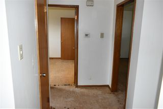 Photo 11: 10407 68 Avenue in Edmonton: Zone 15 House for sale : MLS®# E4204111
