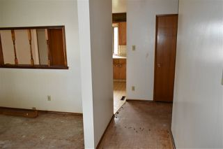 Photo 7: 10407 68 Avenue in Edmonton: Zone 15 House for sale : MLS®# E4204111