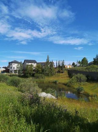 Photo 48: 135 Rockborough Park NW in Calgary: Rocky Ridge Detached for sale : MLS®# A1042290