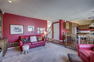 Photo 17: 176 HAWKLAND Circle NW in Calgary: Hawkwood Detached for sale : MLS®# C4272177