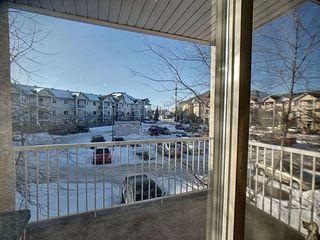 Photo 14: 236 16221 95 Street in Edmonton: Zone 28 Condo for sale : MLS®# E4187199