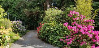 Photo 26: 974 WINDJAMMER Road: Bowen Island House for sale : MLS®# R2460740
