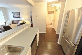 """Photo 8: 302 6390 196 Street in Langley: Willoughby Heights Condo for sale in """"Willowgate"""" : MLS®# R2505808"""