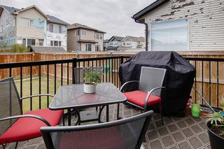 Photo 27: 249 Skyview Shores Manor NE in Calgary: Skyview Ranch Detached for sale : MLS®# A1040770