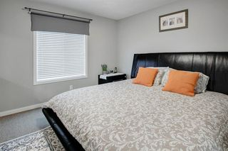 Photo 17: 249 Skyview Shores Manor NE in Calgary: Skyview Ranch Detached for sale : MLS®# A1040770