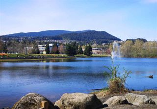"""Photo 29: 2605 1188 PINETREE Way in Coquitlam: North Coquitlam Condo for sale in """"M3"""" : MLS®# R2527415"""