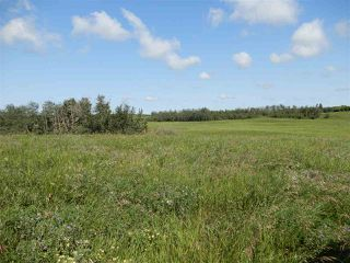 Main Photo: Twsp 551 Range Road 12: Rural Lac Ste. Anne County Rural Land/Vacant Lot for sale : MLS®# E4225347