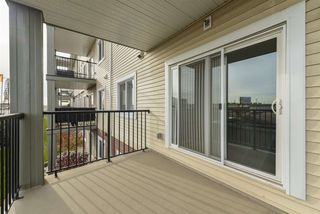 Photo 23: 211 7711 71 Street in Edmonton: Zone 17 Condo for sale : MLS®# E4179144