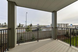 Photo 24: 211 7711 71 Street in Edmonton: Zone 17 Condo for sale : MLS®# E4179144