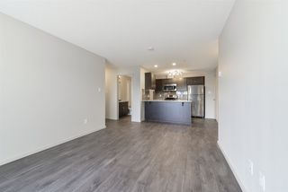 Photo 10: 211 7711 71 Street in Edmonton: Zone 17 Condo for sale : MLS®# E4179144