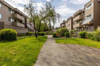 """Photo 22: 24 2440 WILSON Avenue in Port Coquitlam: Central Pt Coquitlam Condo for sale in """"Orchard Valley Estates"""" : MLS®# R2455205"""