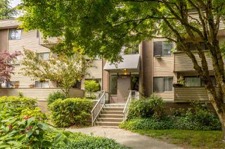 """Photo 20: 24 2440 WILSON Avenue in Port Coquitlam: Central Pt Coquitlam Condo for sale in """"Orchard Valley Estates"""" : MLS®# R2455205"""