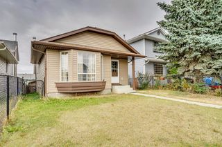 Photo 36: 91 Martinwood Court NE in Calgary: Martindale Detached for sale : MLS®# A1042379