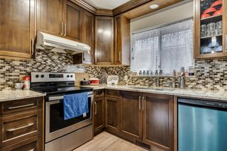 Photo 10: 91 Martinwood Court NE in Calgary: Martindale Detached for sale : MLS®# A1042379