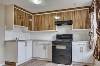 Photo 21: 91 Martinwood Court NE in Calgary: Martindale Detached for sale : MLS®# A1042379